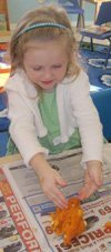 Preschool Science Explorers